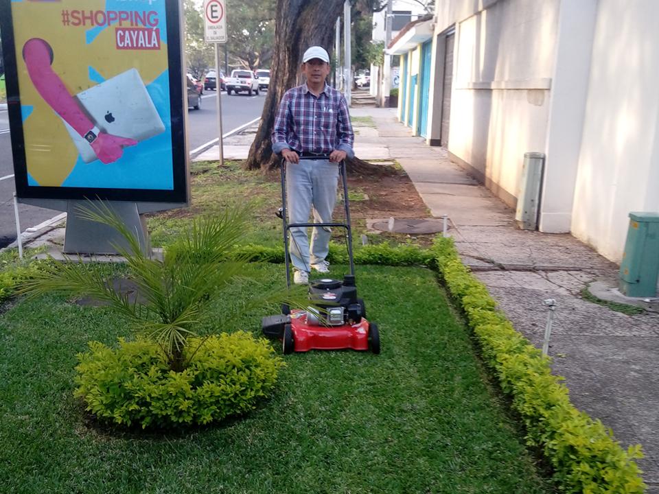 Servicio de Mantenimiento de jardin
