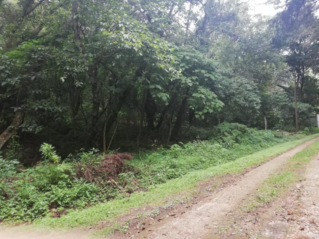 Vendo terreno en sector de granjas en Santiago Sacatepéquez