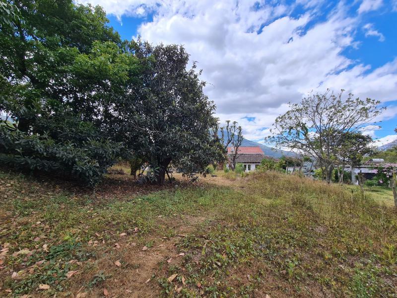 CityMax Antigua vende terreno en San Cristobal El Alto