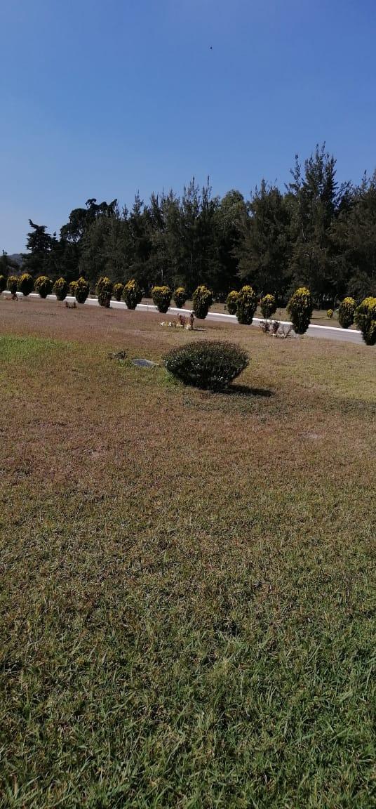 3 Criptas en Venta en Cementerio Los Olivos CAES