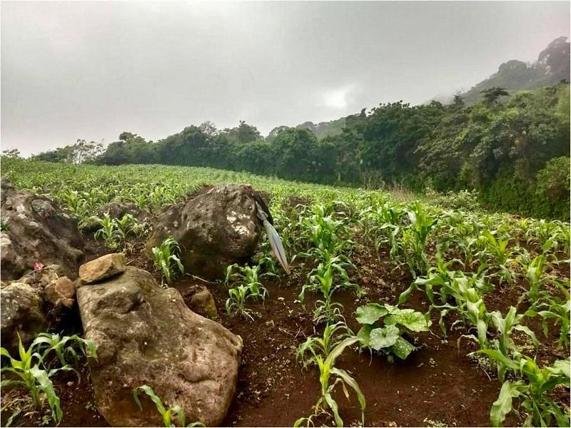 Terreno en Venta en Moyuta Jutiapa