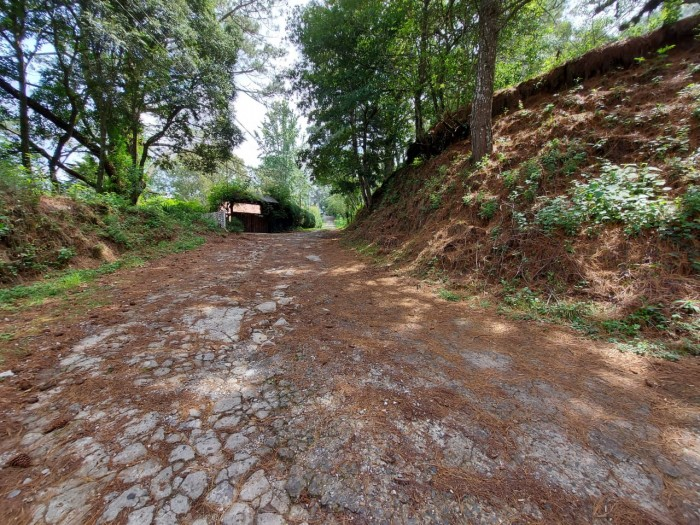 Terreno Residencial en Venta en Granja Buenos Aires