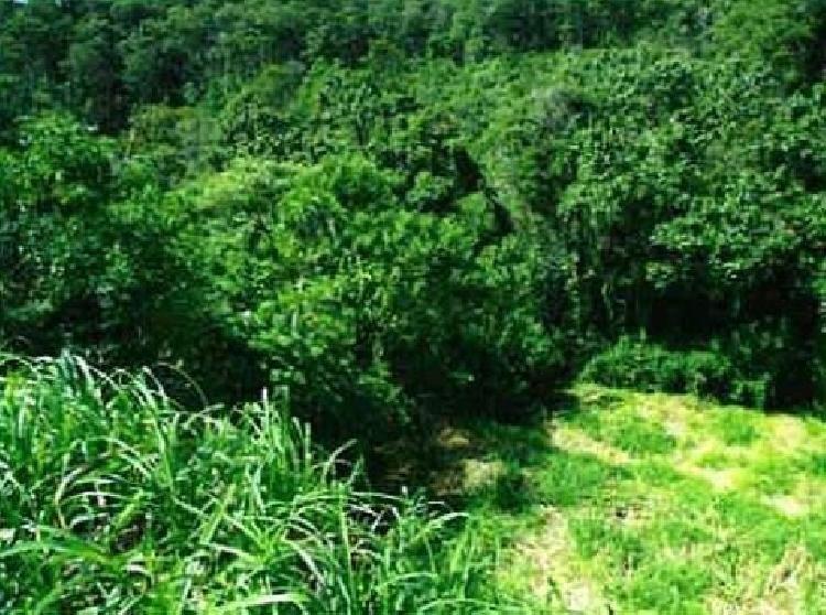 Terreno Residencial en Rancho Verde Fraijanes