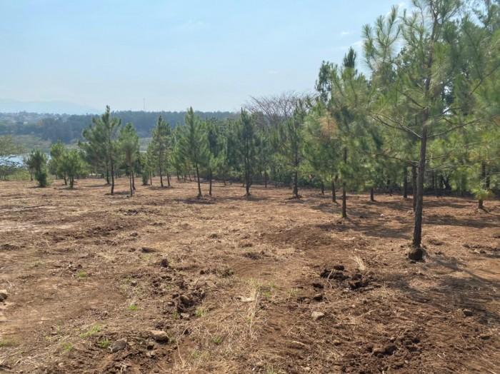 Terreno en Pre-venta en Laguna el Pino Guatemala