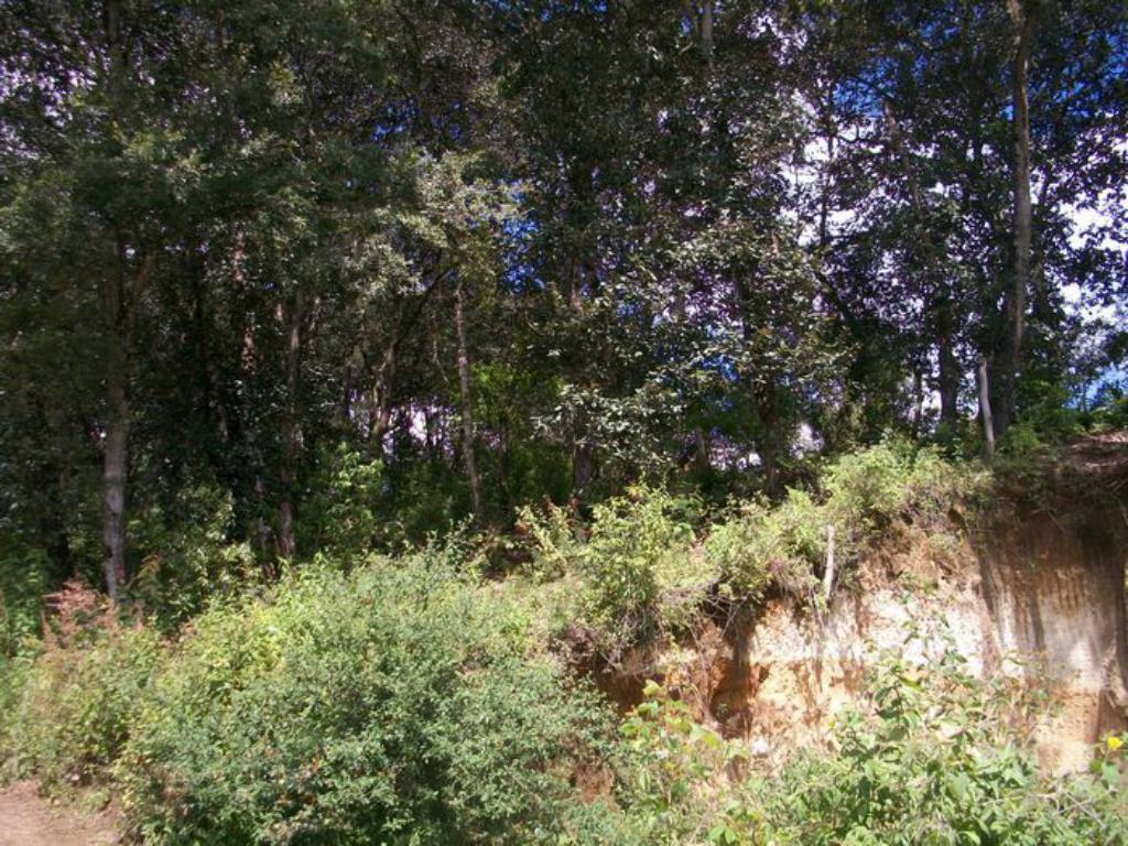 CityMax Antigua vende terreno Aldea Chichorin San Lucas