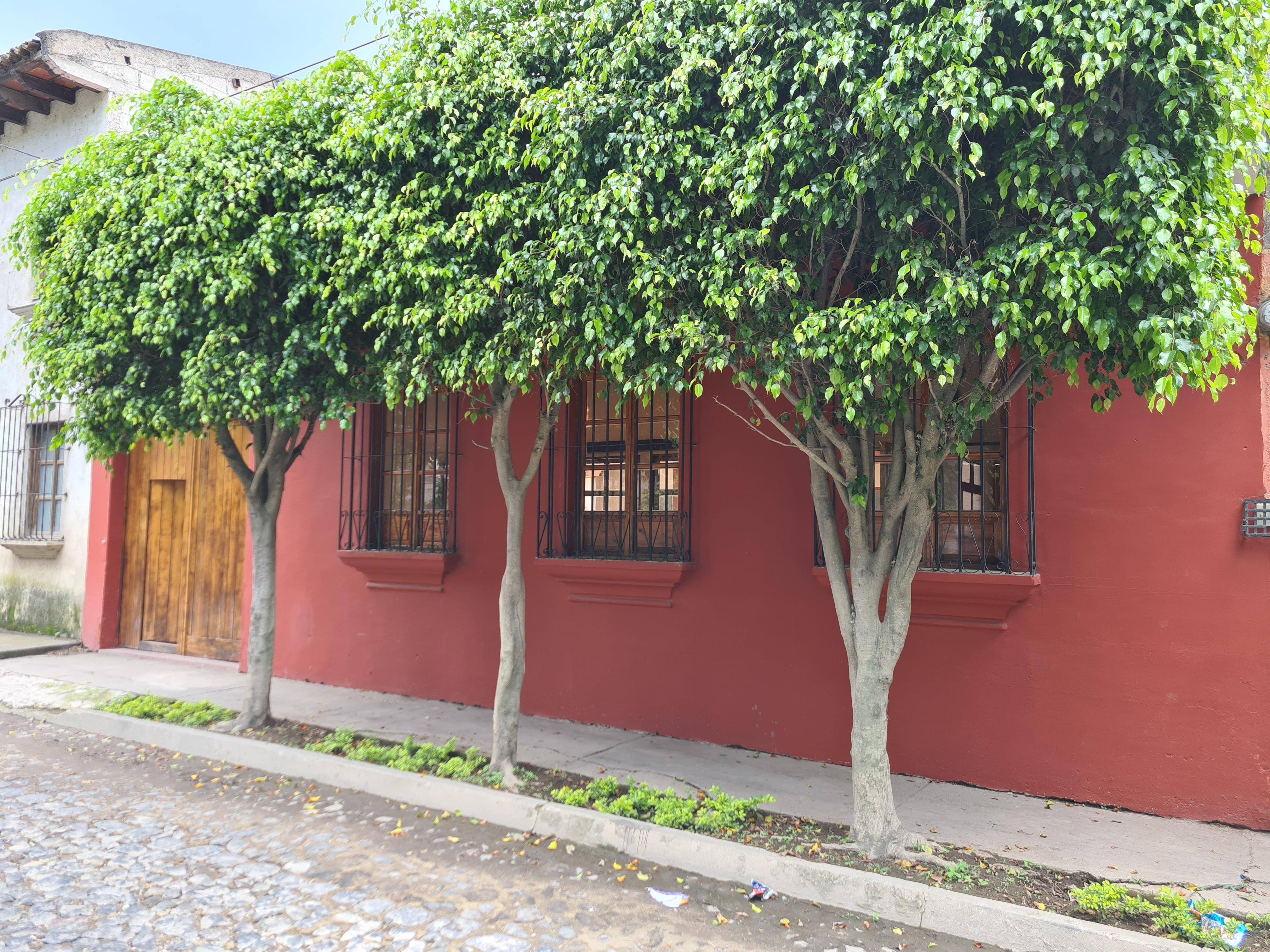 Rento Casa en Antigua Guatemala